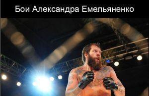 Бои Александра Емельяненько в 2018 году