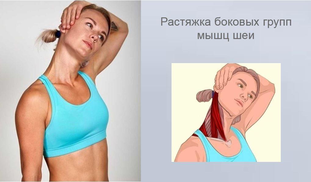 Растяжка боковых групп мышц шеи