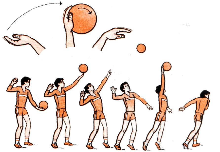 Передача мяча в волейболе