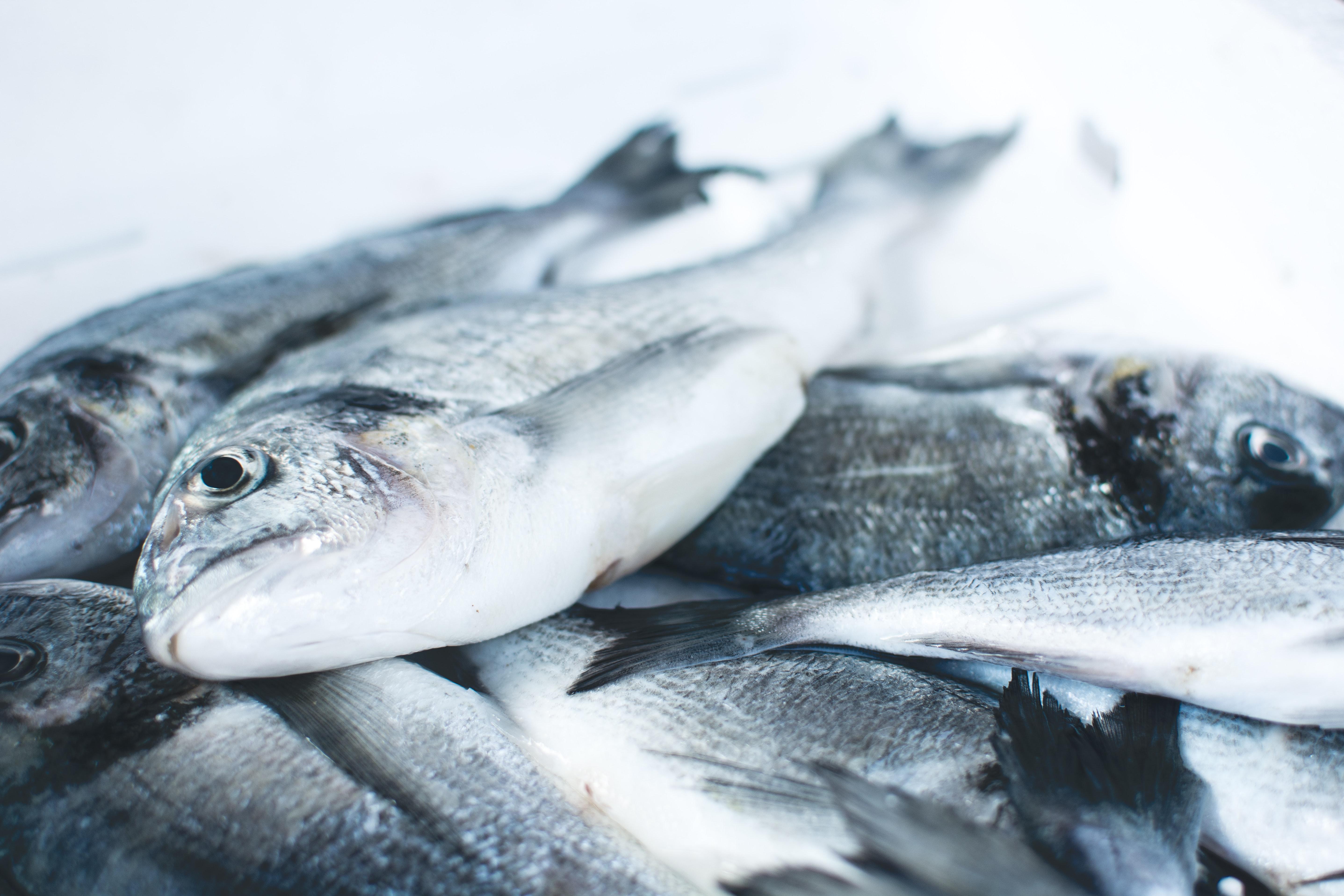 содержание рыбьего жира в продуктах