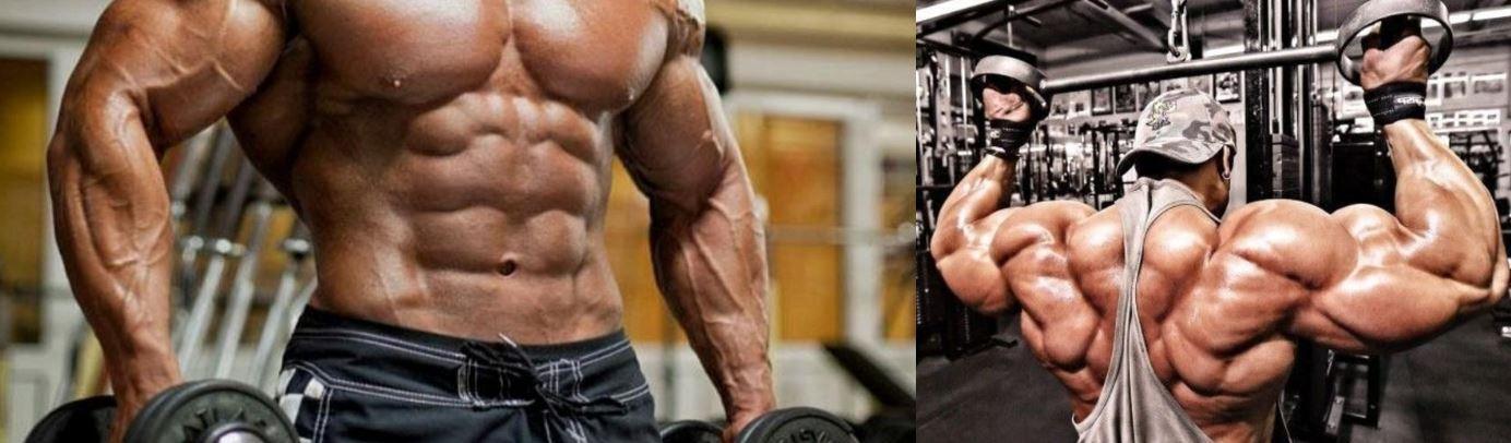 Советы для набора мышечной массы.