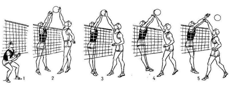 Нападающий удар в волейболе техника