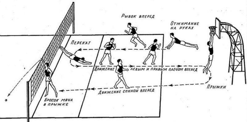 Тактика расстановки в волейболе