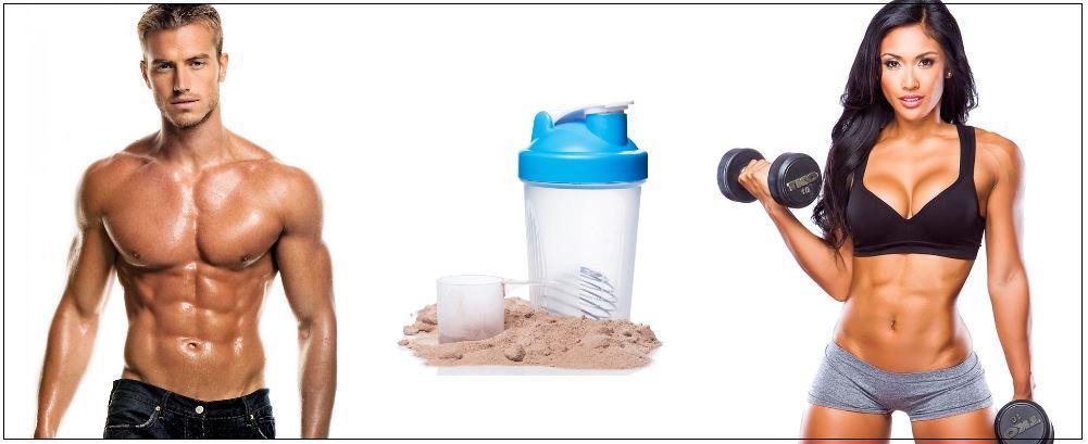 Протеин и тренировки