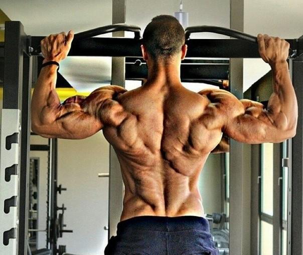 Подтягивания на перекладине для расширения спины