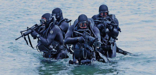 Тренировка Морских пехотинцев США (SEAL)