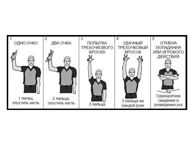 судейские жесты