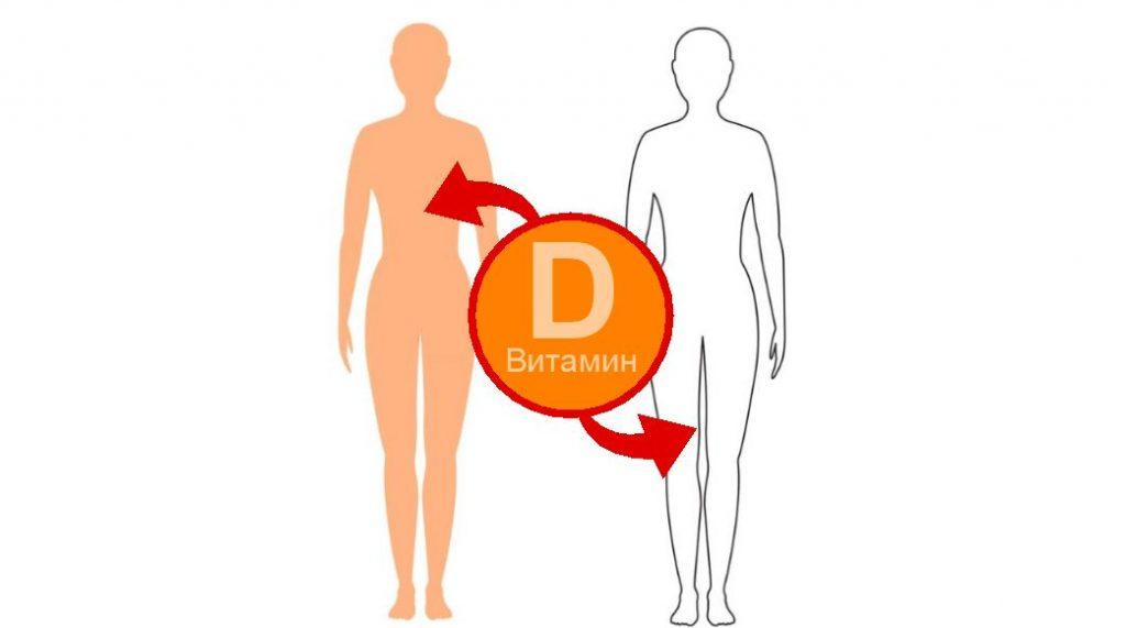 Норма витамина D